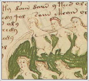 Một trang trong cuốn sách