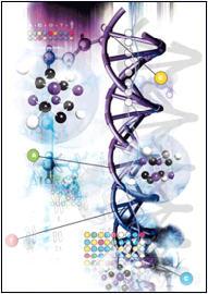Sinh học phân tử đã chứng minh các suy nghĩ của Geoffroy Saint-Hilaire là hoàn toàn chính xác. Chỉ tiếc một điều là sự công nhận này diễn ra cách thời của ông tới nửa thế kỷ.