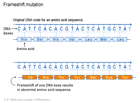 Đột biến lệch khung đọc thay đổi trình tự amino acid kể từ điểm đột biến
