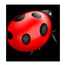 Tập tin:Bug.png