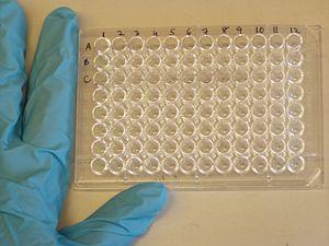 Đĩa 96 giếng (microtiter) thường được dùng cho ELISA