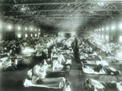 Dich-cum-H1N1.jpg
