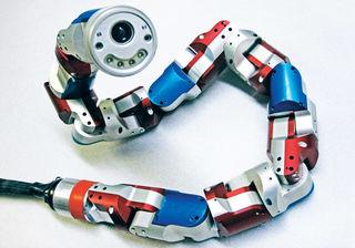 Tập tin:Di-chuyen-cua-ran-va-ung-dung-trong-che-tao-robot.jpg