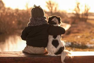 Tập tin:Friend dog.jpg
