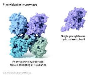 Tập tin:Enzyme.jpg