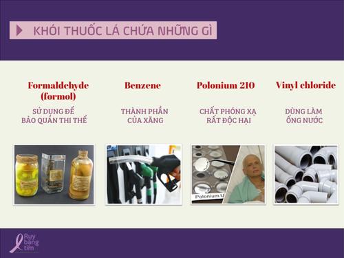 Khoi-thuoc-la-chua-nhung-gi.png