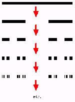 Cantor-set.jpg