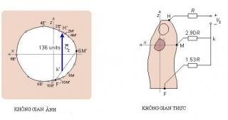 Tập tin:Fig.16.9edit.JPG