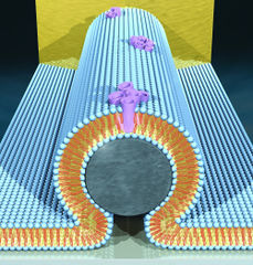 Tập tin:Nano-electronic.jpg