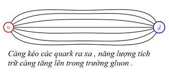 Bai-9-QCD-va-su-giam-ham-4.jpg