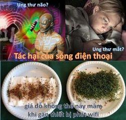 Tập tin:Tac-hai-cua-dien-thoai-di-dong.jpg