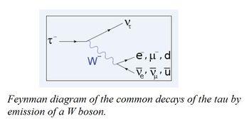 Bai-3-QED-μ-gioi-thieu-ve-muon-7.jpg