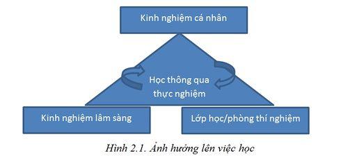 Anh-huong-len-viec-hoc.jpg