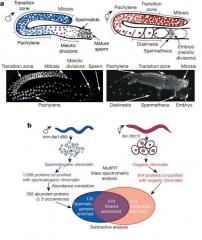 Tập tin:Proteomic strategy.jpg