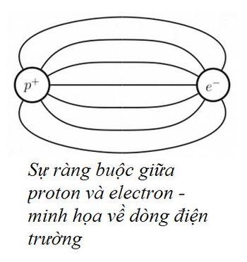 Bai-9-QCD-va-su-giam-ham-1.jpg
