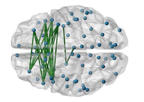 Phat-hien-cach-thuc-lien-lac-la-cua-neuron-than-kinh.jpg