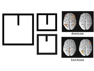 Tập tin:Brain and simple line in a square.jpg
