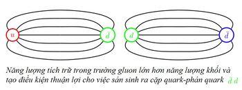 Bai-9-QCD-va-su-giam-ham-6.jpg