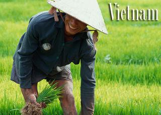 Tập tin:Viet-Nam-2.jpg