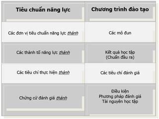 Tập tin:Chuyen-hoa-tieu-chuan-nang-luc-sang-chuong-trinh-dao-tao-2.png