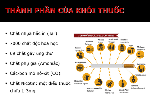 Thanh-phan-va-doc-tinh-cua-khoi-thuoc-la.png