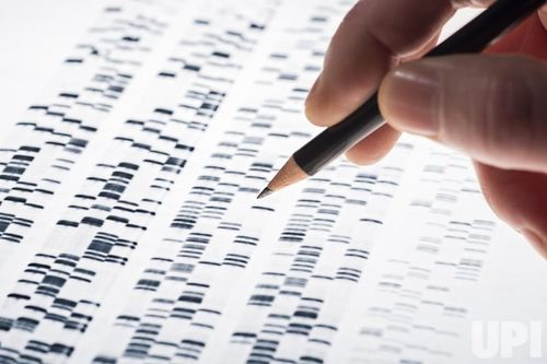 Top-10-scientific-discoveries-of-2015-6.jpg