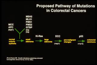 Tập tin:Mutation-pathway.jpg