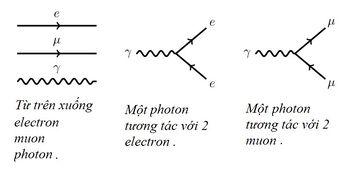 Bai-3-QED-μ-gioi-thieu-ve-muon-2.jpg