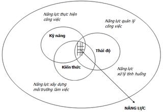 Tập tin:Thanh-vien-nguyenthephuc-note-nang-luc-va-cac-khai-niem-lien-quan.png