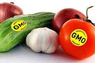 Tập tin:Gmo-foods.jpg