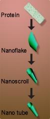 Tập tin:Nanotube formation.jpg