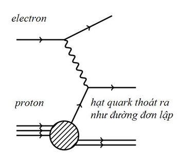 Bai-7-Cac-chu-linh-quarks-Mot-cuoc-gap-go-thu-vi-7.jpg