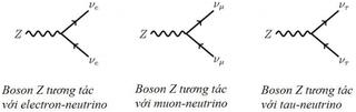 Tập tin:Bai-5-Cac-chang-ngu-lam-Neutrinos-2.png