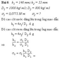 Bai-61.png