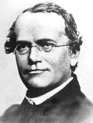 Tập tin:Gregor Mendel.jpg