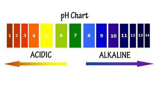 Tập tin:Do-pH-la-gi.jpg